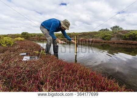 Scientist Measuring Water Depth To Install Water Level Data Loggers In A Coastal Wetland  To Underst