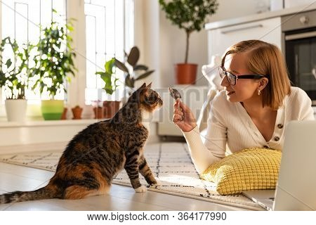 Smiling Woman Freelancer Lies On The Carpet In Living Room, Plays With Cat A Toy Mouse At Home, Work