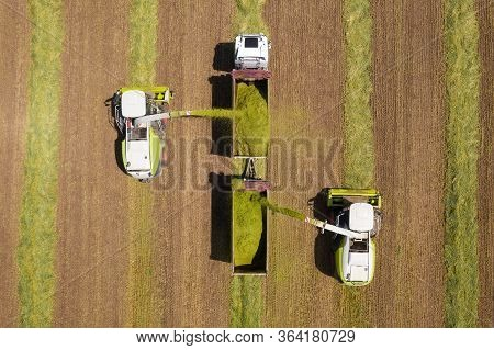 Combine Picking And Shredding Harvested Wheat For Silage And Unloads Onto A Double Trailer Truck.