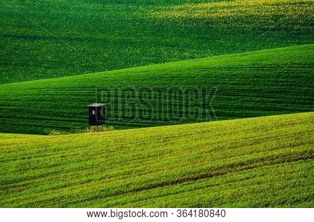 Rolling Green Hills With Fields And Wooden Hunting Shack Suitable For Backgrounds Or Wallpapers, Nat