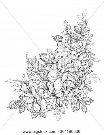 Hand Drawn Rose Flower And Leaves Bunch Isolated On White. Vector Line Art Monochrome Elegant Floral