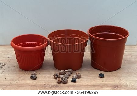 Three Pots For Transplanting Indoor Plants Ready For Transplanting With Drainage