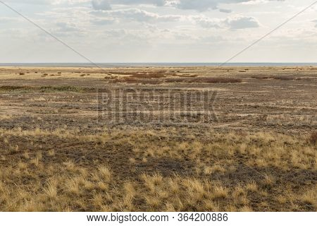 Steppe In Kazakhstan, Dry Grass In The Boundless Steppe. Autumn Landscape