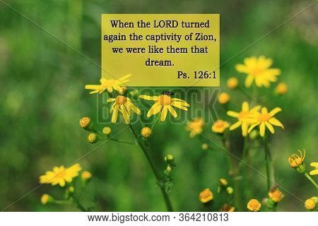 Bible Quotes On Yellow Flowers Background. Card With Text Sign For Believers. Inspirational Verse Th