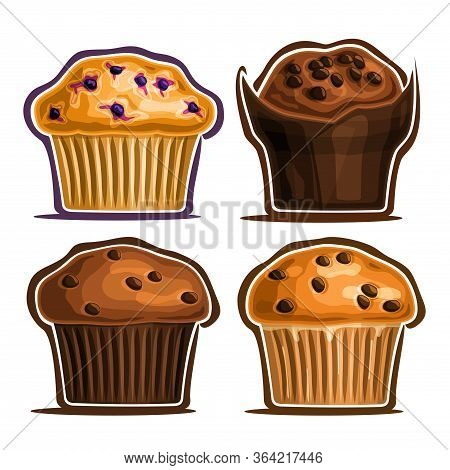 Vector Set Of Assorted Muffins, Collection Of 4 Cut Out Illustrations Of Diverse Muffins With Bluebe