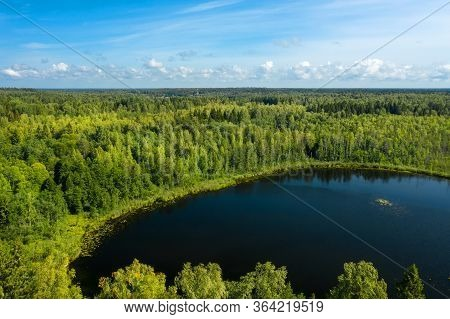 Top View Of The Forest Lake And Vegetation Along Its Shores