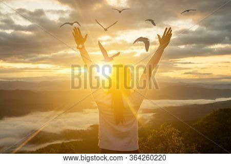 Woman Holds The Hand Of A Bird Flying And Freedom