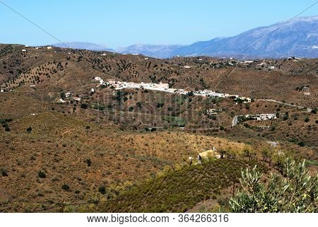 View Of A Typical Andaucian Hamlet Nestling In The Hills (pueblo Blanco, Whitewashed Village), Benaq