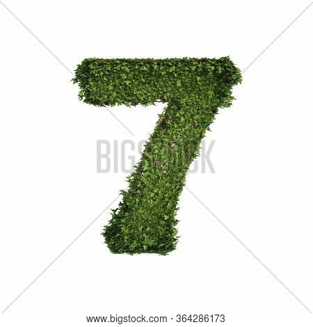 Ivy Plant With Leaves, Green Creeper Bush And Vines Forming Number Seven, 7, Alphabet Text Font Char