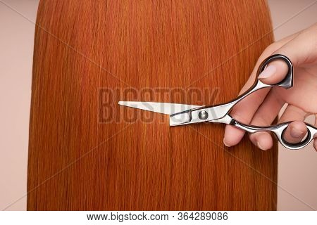 Hairdresser Cuts Long Red Hair With Scissors. Hair Salon, Hairstylist. Care And Beauty Hair Products