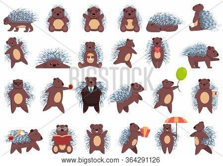 Porcupine Icons Set. Cartoon Set Of Porcupine Vector Icons For Web Design