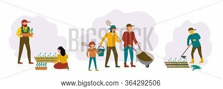 People Gardening. Woman Planting Seedlings, Agriculture Gardener Hobby And Garden Job. Gardening Per