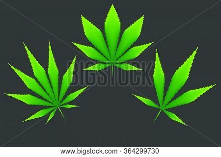 Icons Of Cannabis Leaf From Rectangles