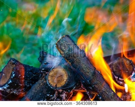 Bonfire And Flames Close-up, From Burning Dry Branches. Bonfire For Making Barbecue.