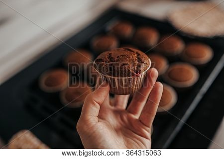 Chocolate Muffins Bakery. Brownie Cupcakes On The Baking Pan. Baking At Home, Home Bakery. Woman Han