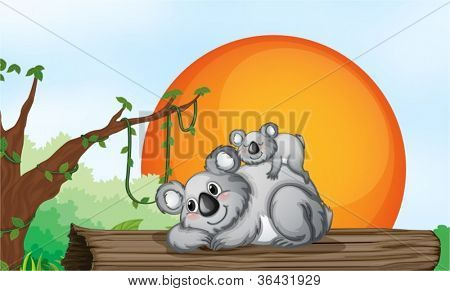 illustration of two grey bears resting on a wood