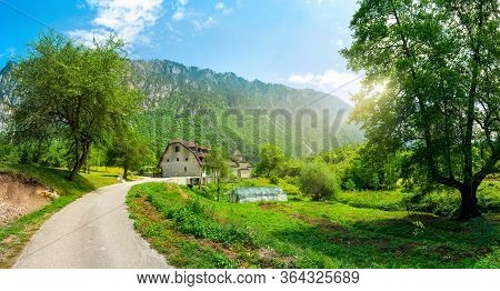 The Road In Montenegro Near The Monastery Dobrilovina