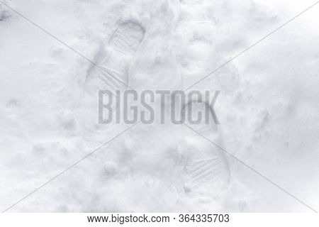Footprints Fresh Snow. Footprints In The White Snow, Snowdrift. White Snow With Traces Of Man. Top V