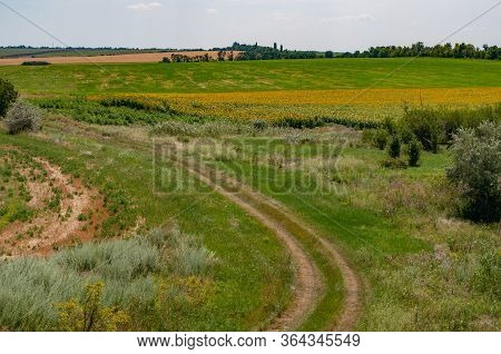 Tranquil Landscape Of Countryside With Green And Yellow Fields And Country Road Turn. Rural Landscap