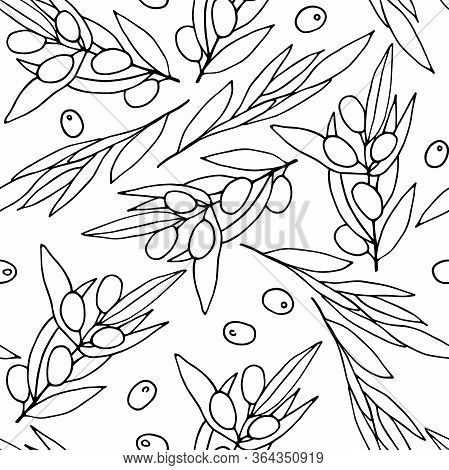 Seamless Black And White Pattern Olives. Outline Olive Branches Isolated On White Background. Random