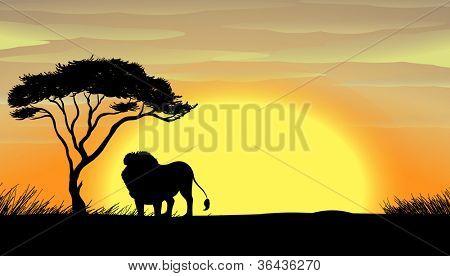 illustration of a lion under tree in dark