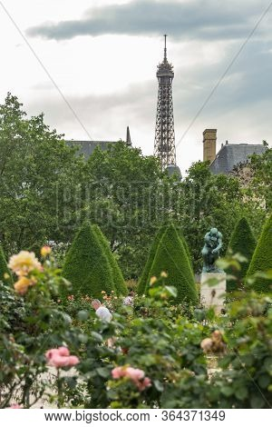 Paris, France - June 22, 2016: Garden Of The Rodin Museum With The Thinker Statue Among The Rose Flo