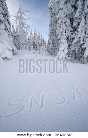 Inscription Snow On The Snow