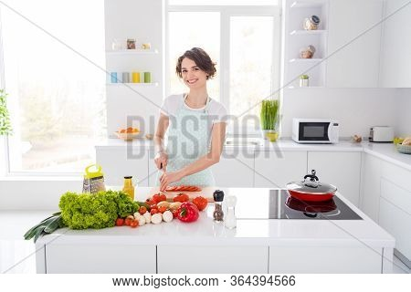 Photo Of Housewife Attractive Chef Lady Arms Holding Tomato Cutting Knife Slices Enjoy Morning Cooki