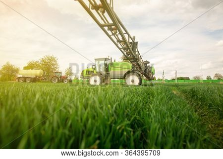 Tractor Spraying Pesticides, Fertilizing On The Vegetable Field With Sprayer At Spring, Fertilizatio