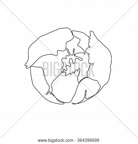 Hand Drawn Peony Line On White Background. Line Art Drawing Illustration With Black Peony Outline Ic