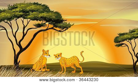 illustration of a leopard under the tree