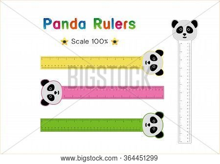 Panda Head Of Rulers Inch And Metric Rulers. Scale For A Ruler In Inches And Centimeters. Centimeter