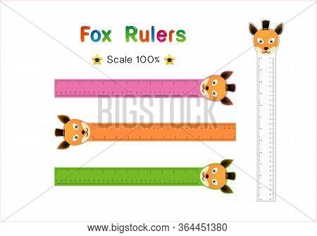 Fox Head Of Rulers Inch And Metric Rulers. Scale For A Ruler In Inches And Centimeters. Centimeters