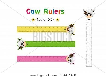Cow Head Of Rulers Inch And Metric Rulers. Scale For A Ruler In Inches And Centimeters. Centimeters