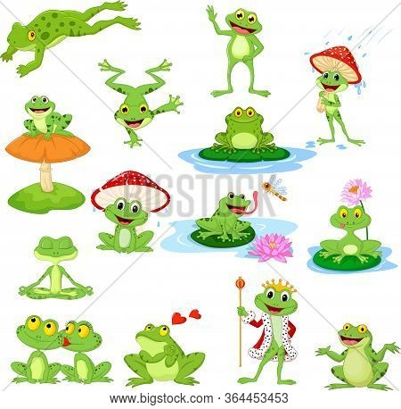 Vector Illustration Of Cartoon Funny Frog Collection Set