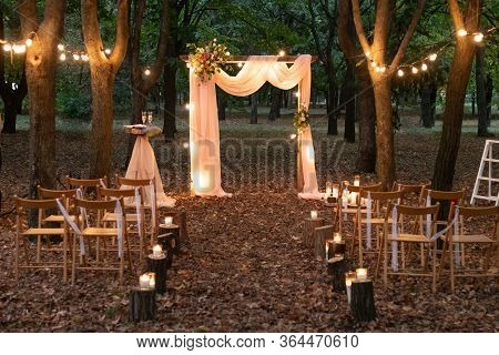 Wedding Arch In The Woods With Light Bulbs. Beautiful Wedding Rustic In The Forest. Seats For Guests
