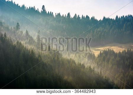 Fog Above The Forest On The Hill. Mysterious Foggy Weather In The Morning. Fantastic Mountain Scener