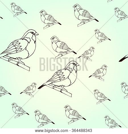 Seamless Pattern Sparrow, Bird In Winter On A Light Background. Drawn Outline. Vector Illustration F
