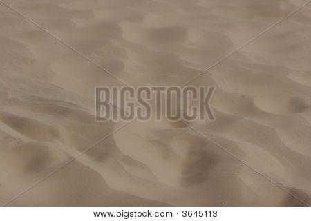 desert sand closeup in sahara egypt africa poster