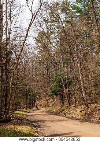 A Winding Dirt Road Through Bare Spring Woods On A Sunny Spring Day In Warren County, Pennsylvania,