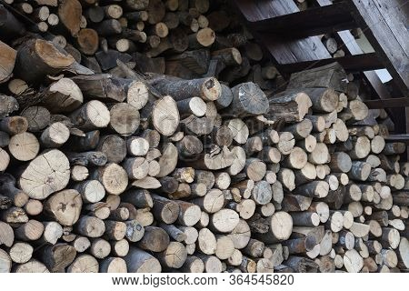 Pile Of Chopped Fire Wood Prepared For Winter. Preparation Of Firewood For The Winter. Firewood Back