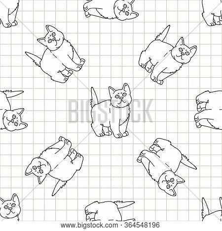 Cute Cartoon Monochrome British Shorthair Kitten Seamless Vector Pattern. Pedigree Lineart Kitty Bre