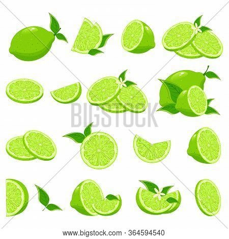 Fresh Lime And Lime Juice. Top View. Lime Sliced In Various Pieces. Limes, Four Views: Whole, Half,