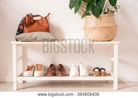 Leather bag on pillow and basket with green domestic plant on upper shelf and row of sportive and casual footwear on lower one