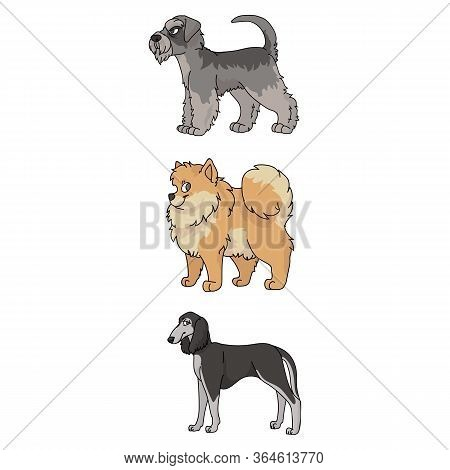 Cute Cartoon Dog Breed Set Vector Clipart. Pedigree Kennel Doggie Breed For Dog Lovers. Purebred Sho