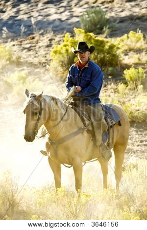 Sunlight Cowboy
