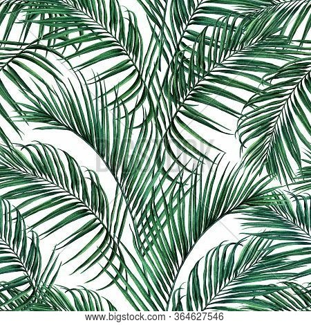 Watercolor Painting Coconut,palm Leaf,green Leave Seamless Pattern Isolated On White Background.wate