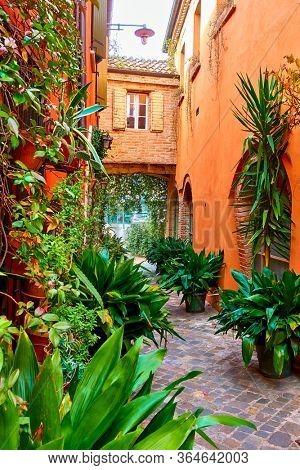 Small garden with plants in flowerpots in narrow alley in San Giovanni in Marignano, Italy - Italian cityscape