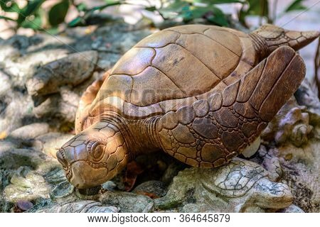 Statuette Of A Sea Turtle Made Of Wood Closeup.