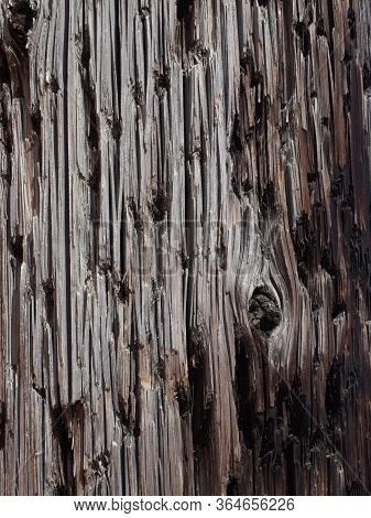 Close Up Of The Woodgrain Of A Utility Pole With Gray Brown And Dark Brown Wood.